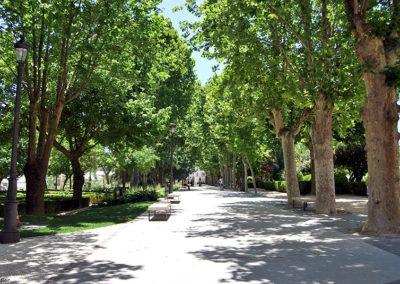 Baza Alameda cercana al palacio